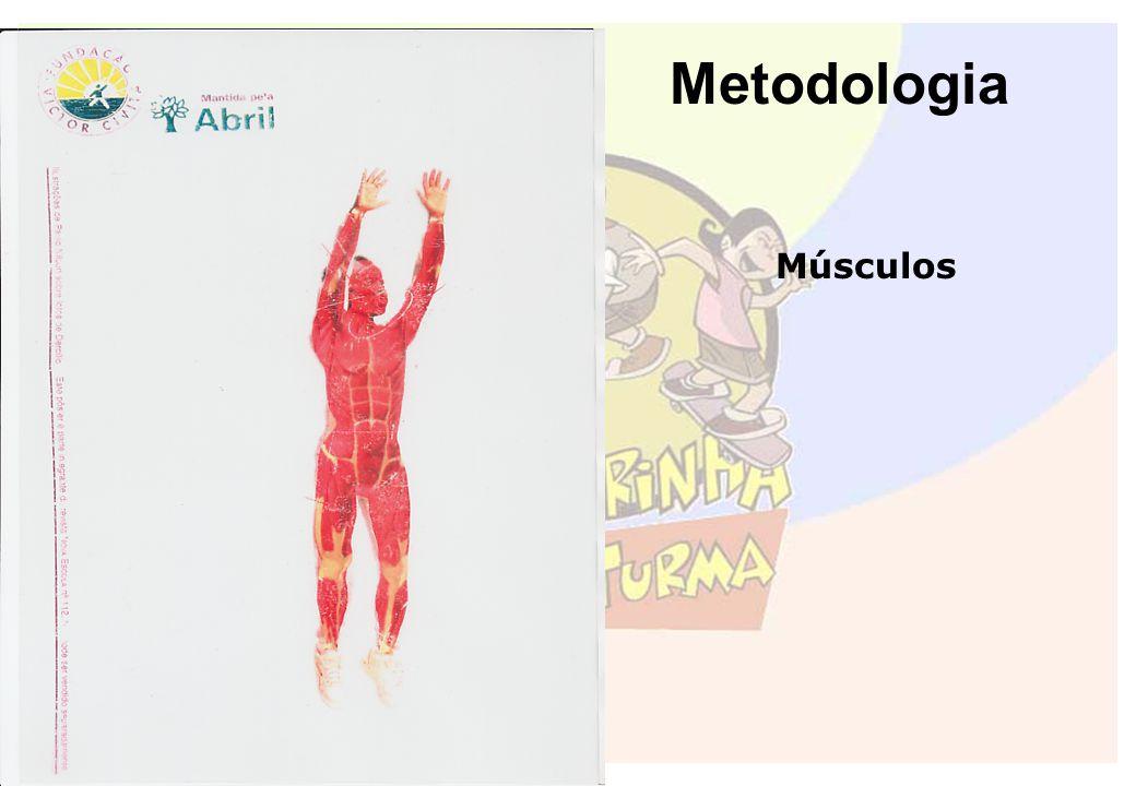 Metodologia Músculos.