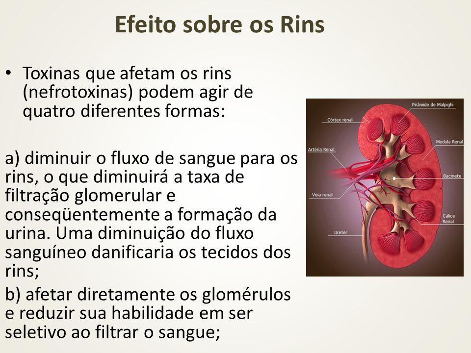 Efeito sobre os Rins Toxinas que afetam os rins (nefrotoxinas) podem agir de quatro diferentes formas: