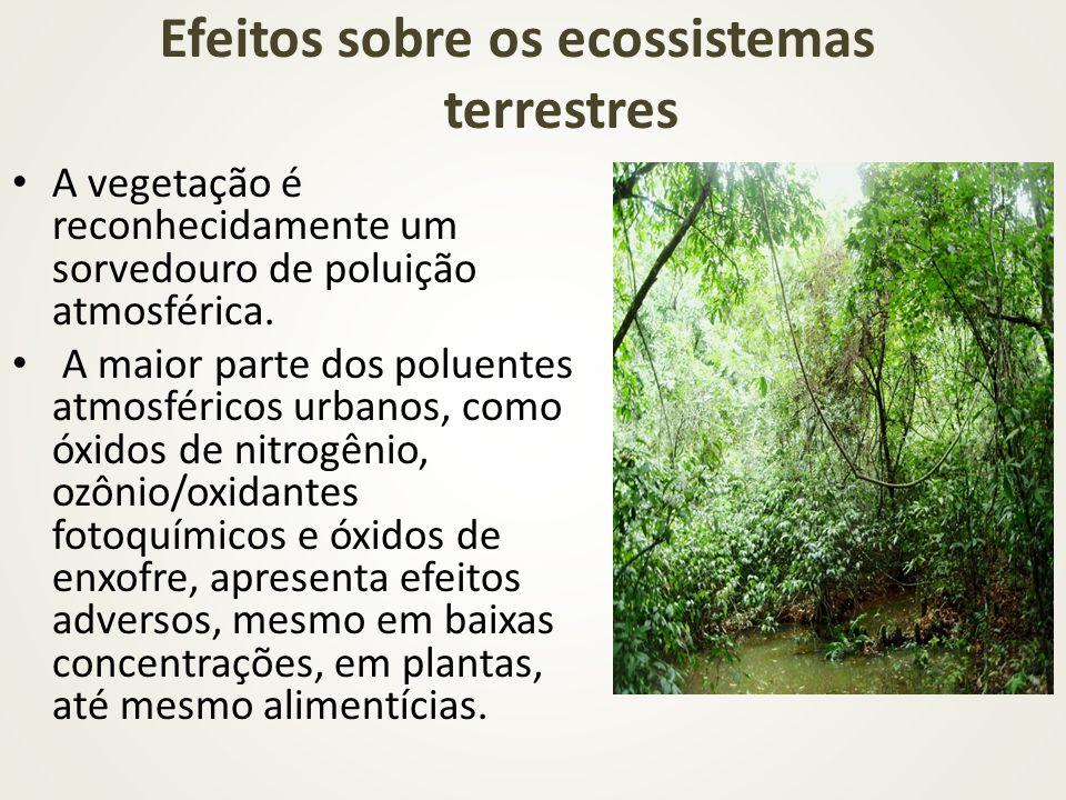 Efeitos sobre os ecossistemas terrestres