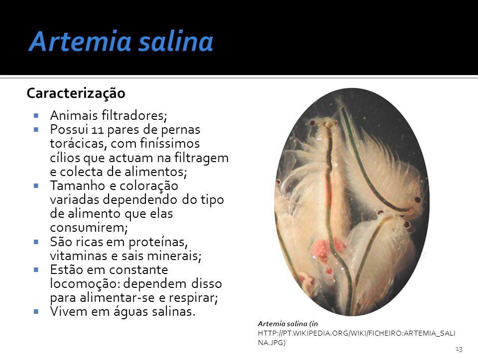 Artemia salina Caracterização Animais filtradores;