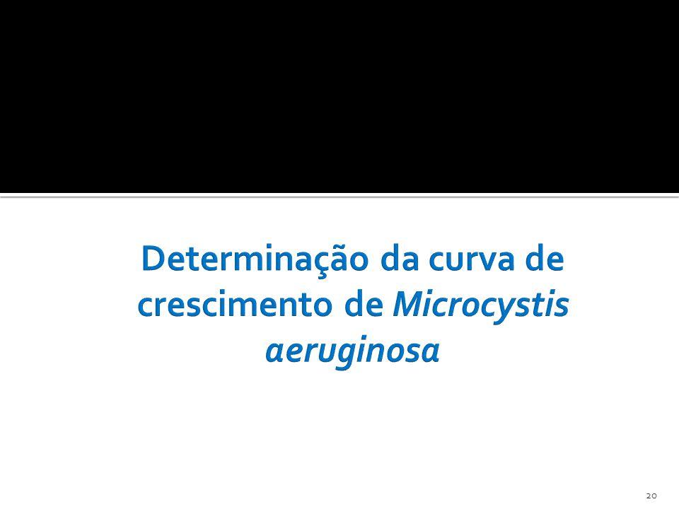 Determinação da curva de crescimento de Microcystis aeruginosa
