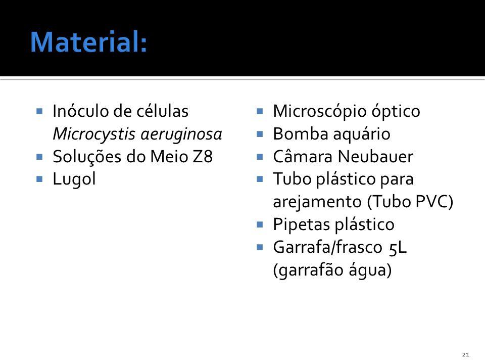 Material: Inóculo de células Microcystis aeruginosa