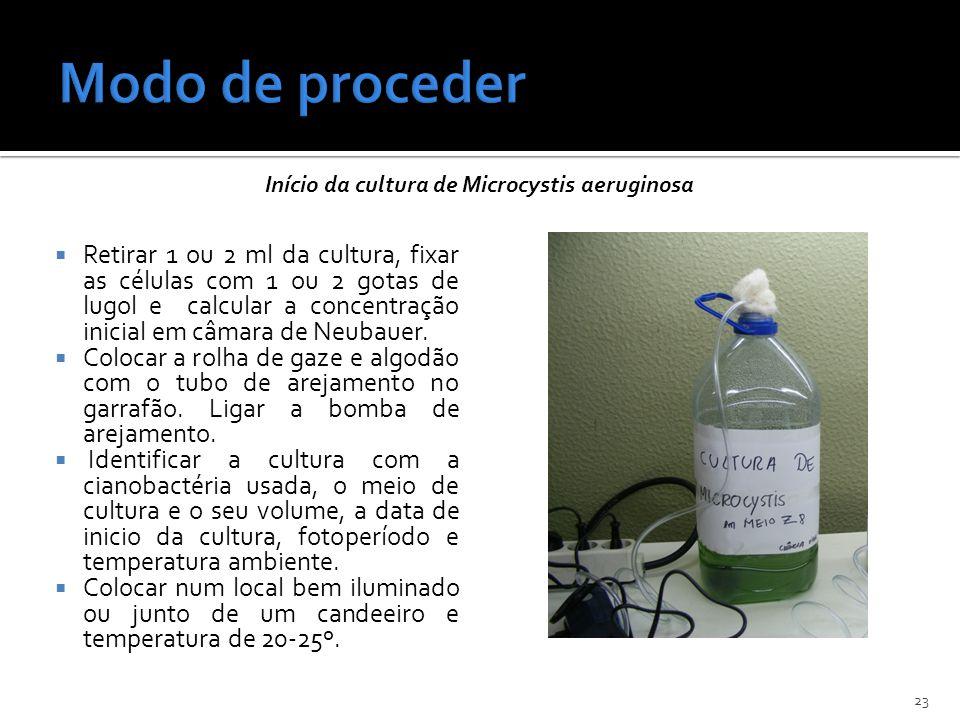 Modo de proceder Início da cultura de Microcystis aeruginosa.