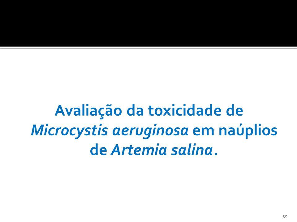 Avaliação da toxicidade de Microcystis aeruginosa em naúplios de Artemia salina.