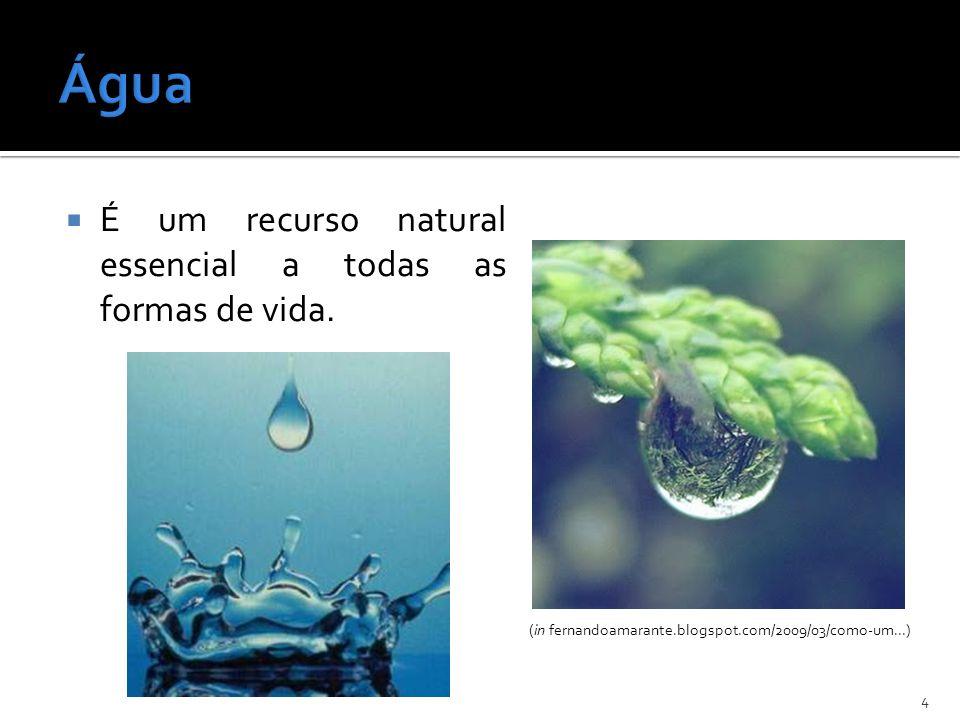 (in fernandoamarante.blogspot.com/2009/03/como-um...)