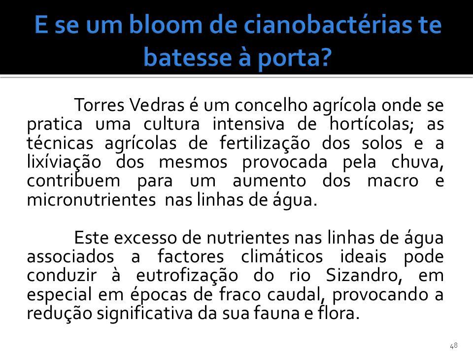 E se um bloom de cianobactérias te batesse à porta