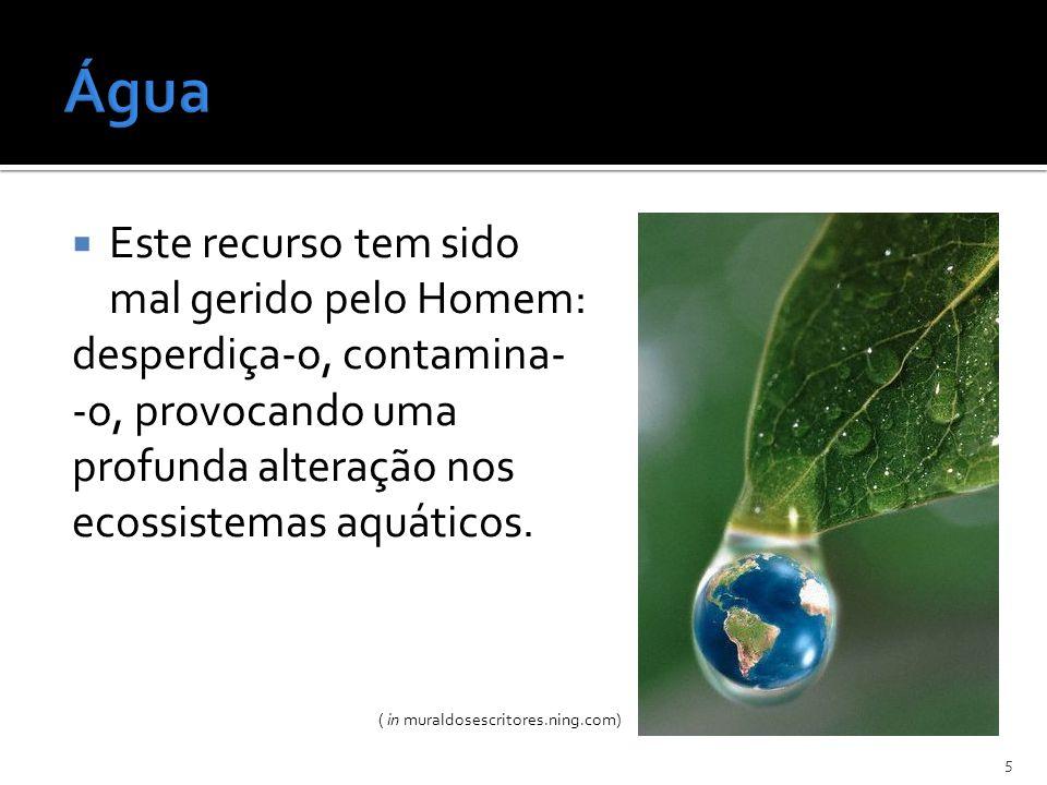 Água Este recurso tem sido mal gerido pelo Homem: