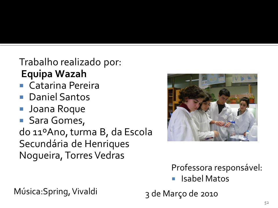 Trabalho realizado por: Equipa Wazah Catarina Pereira Daniel Santos