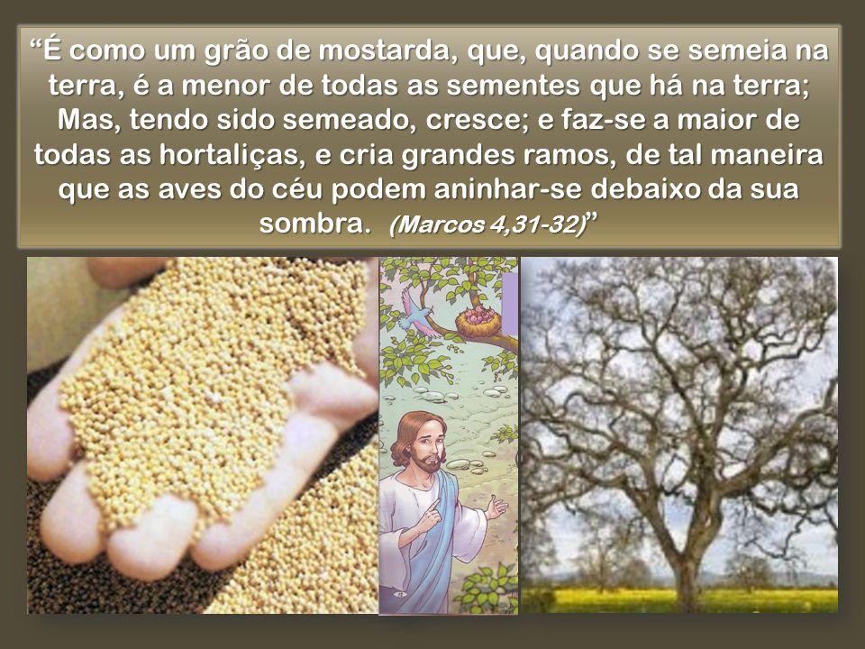 É como um grão de mostarda, que, quando se semeia na terra, é a menor de todas as sementes que há na terra;