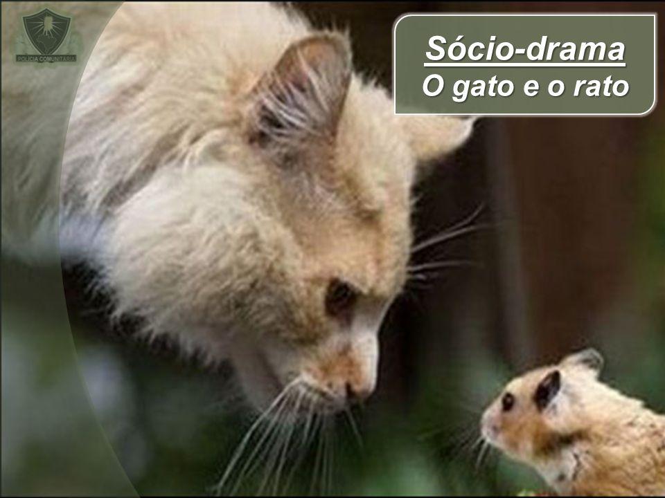 Sócio-drama O gato e o rato