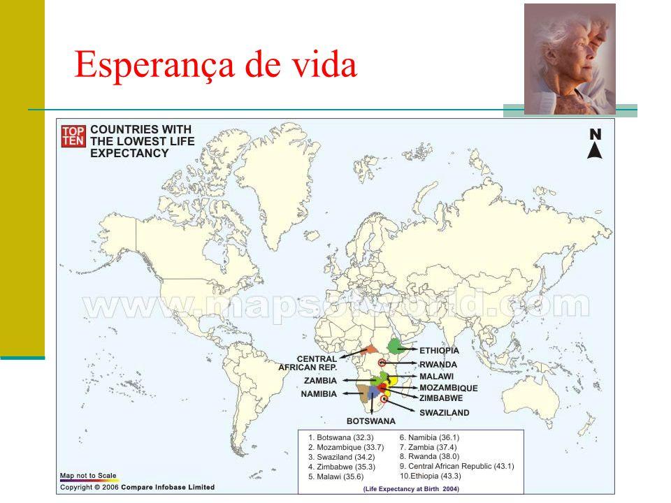 Prof. Teresa Condeixa Monteiro – 2008/2009