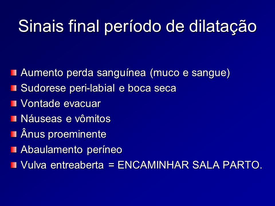 Sinais final período de dilatação