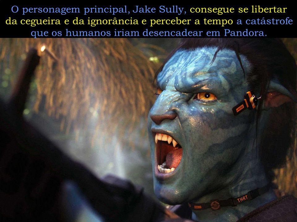 O personagem principal, Jake Sully, consegue se libertar da cegueira e da ignorância e perceber a tempo a catástrofe que os humanos iriam desencadear em Pandora.