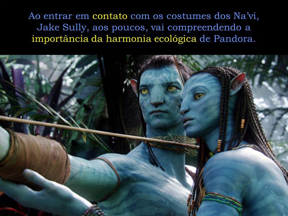 Ao entrar em contato com os costumes dos Na'vi, Jake Sully, aos poucos, vai compreendendo a importância da harmonia ecológica de Pandora.