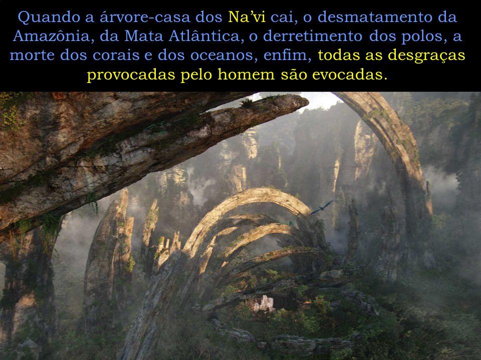 Quando a árvore-casa dos Na'vi cai, o desmatamento da Amazônia, da Mata Atlântica, o derretimento dos polos, a morte dos corais e dos oceanos, enfim, todas as desgraças provocadas pelo homem são evocadas.