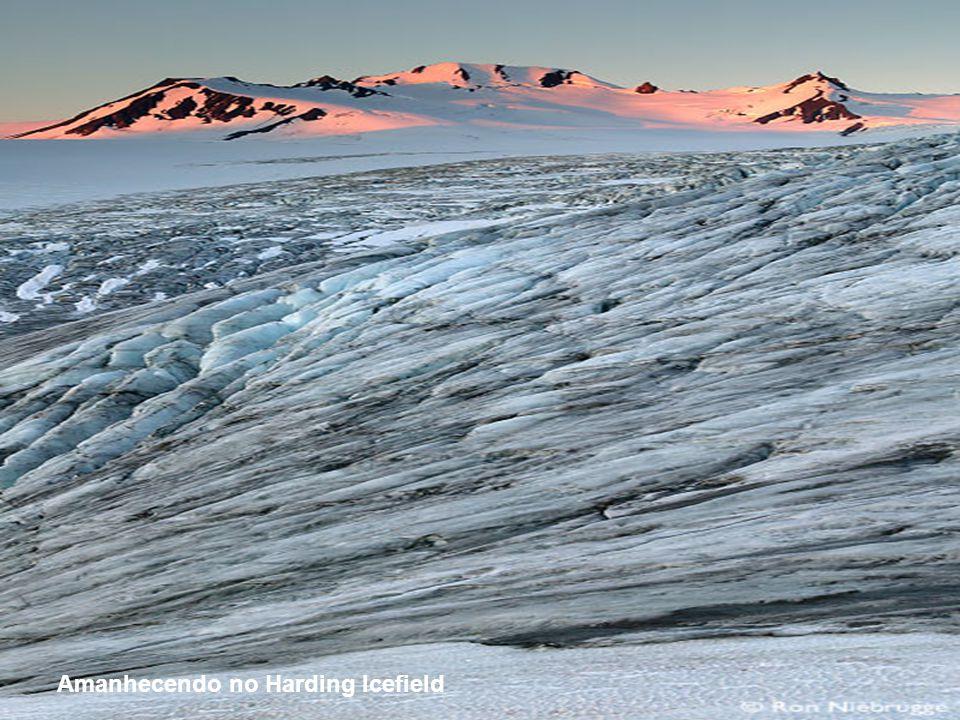 Amanhecendo no Harding Icefield