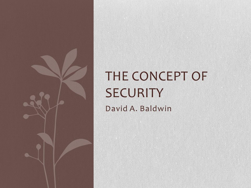 The Concept of Security