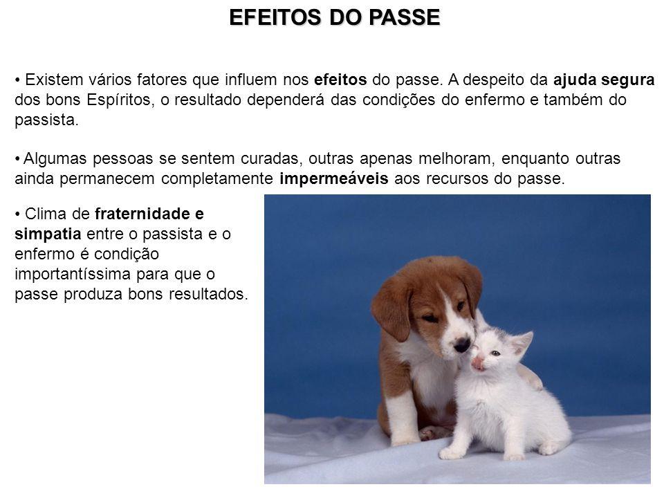 EFEITOS DO PASSE