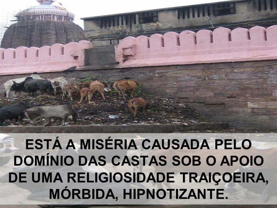 ESTÁ A MISÉRIA CAUSADA PELO DOMÍNIO DAS CASTAS SOB O APOIO DE UMA RELIGIOSIDADE TRAIÇOEIRA, MÓRBIDA, HIPNOTIZANTE.