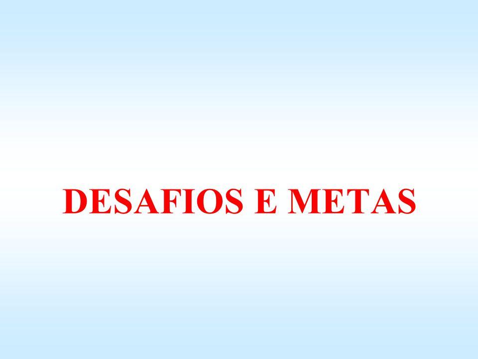 DESAFIOS E METAS 13