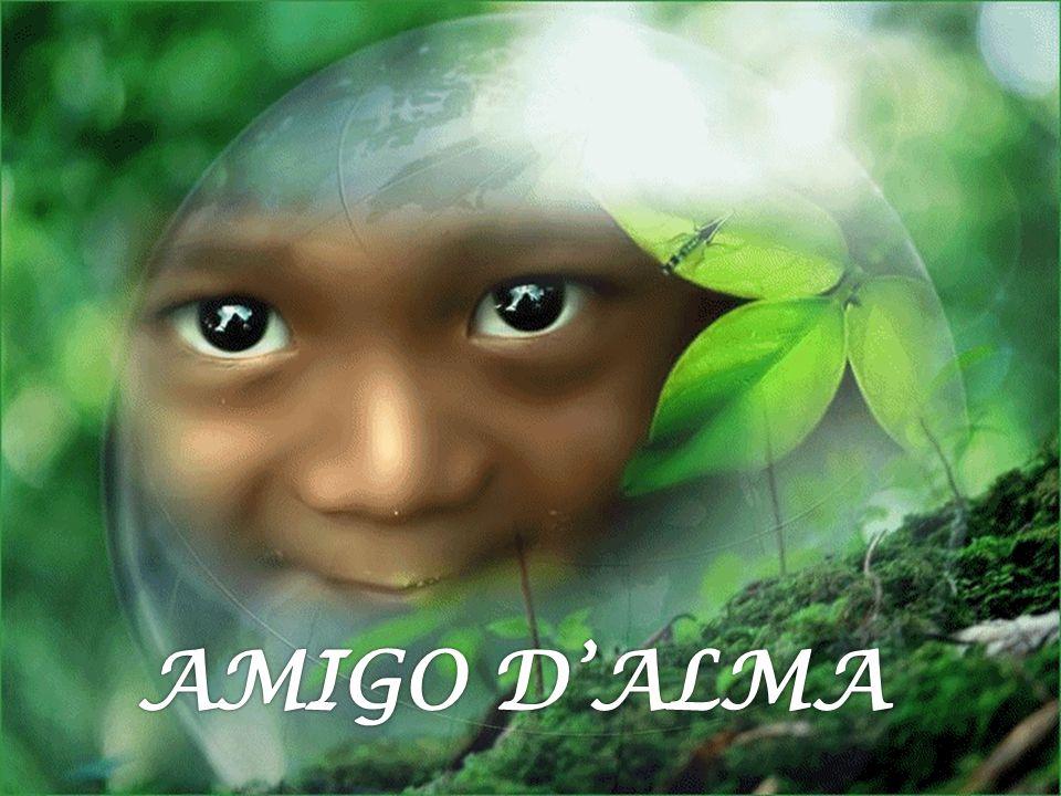 AMIGO D'ALMA