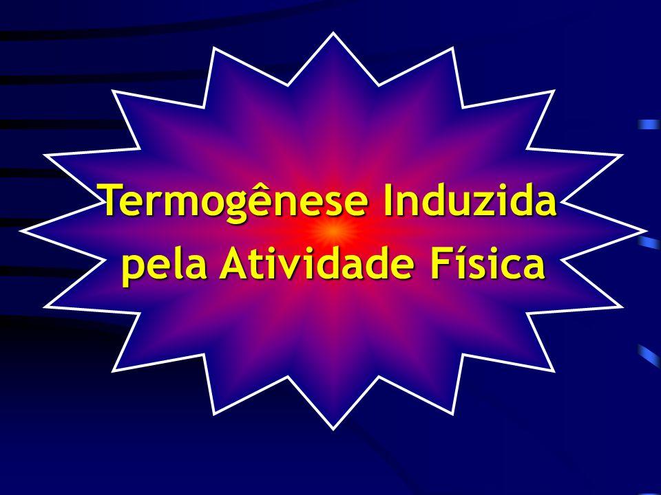 Termogênese Induzida pela Atividade Física