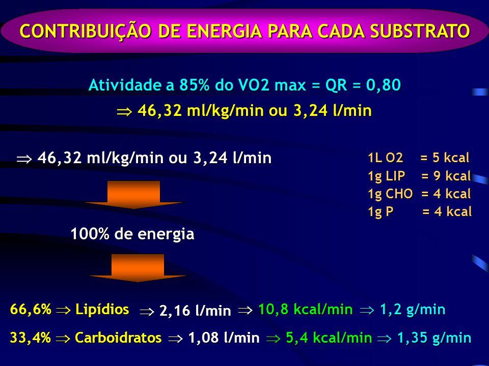 CONTRIBUIÇÃO DE ENERGIA PARA CADA SUBSTRATO
