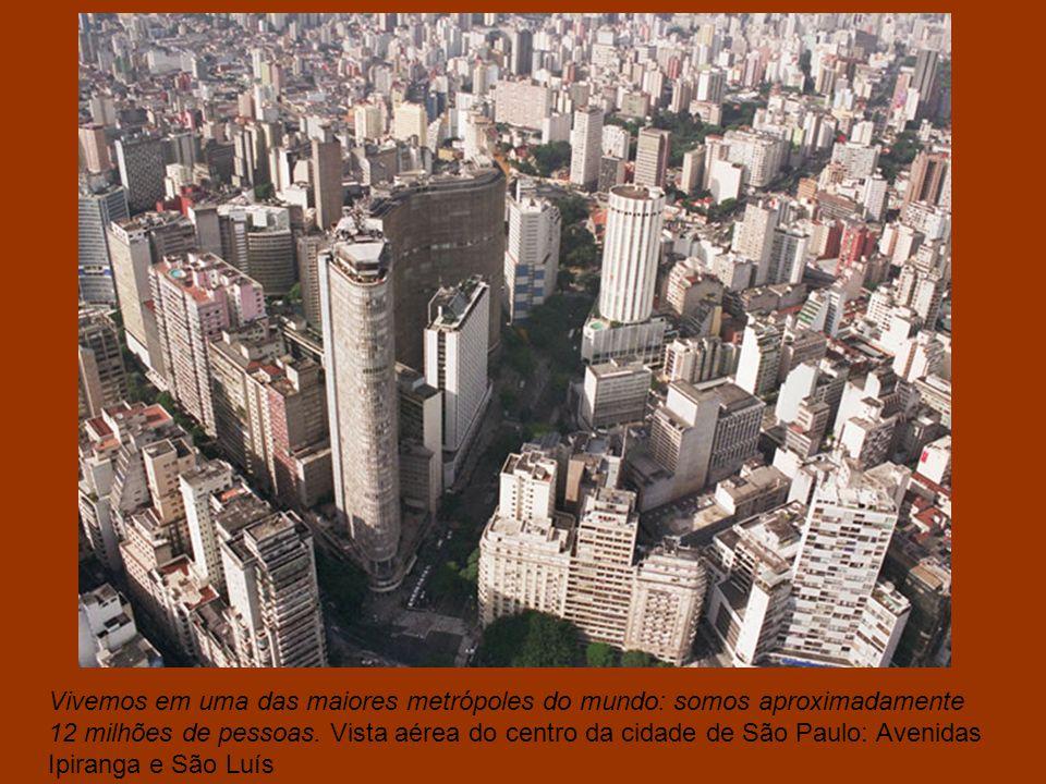 Vivemos em uma das maiores metrópoles do mundo: somos aproximadamente 12 milhões de pessoas.