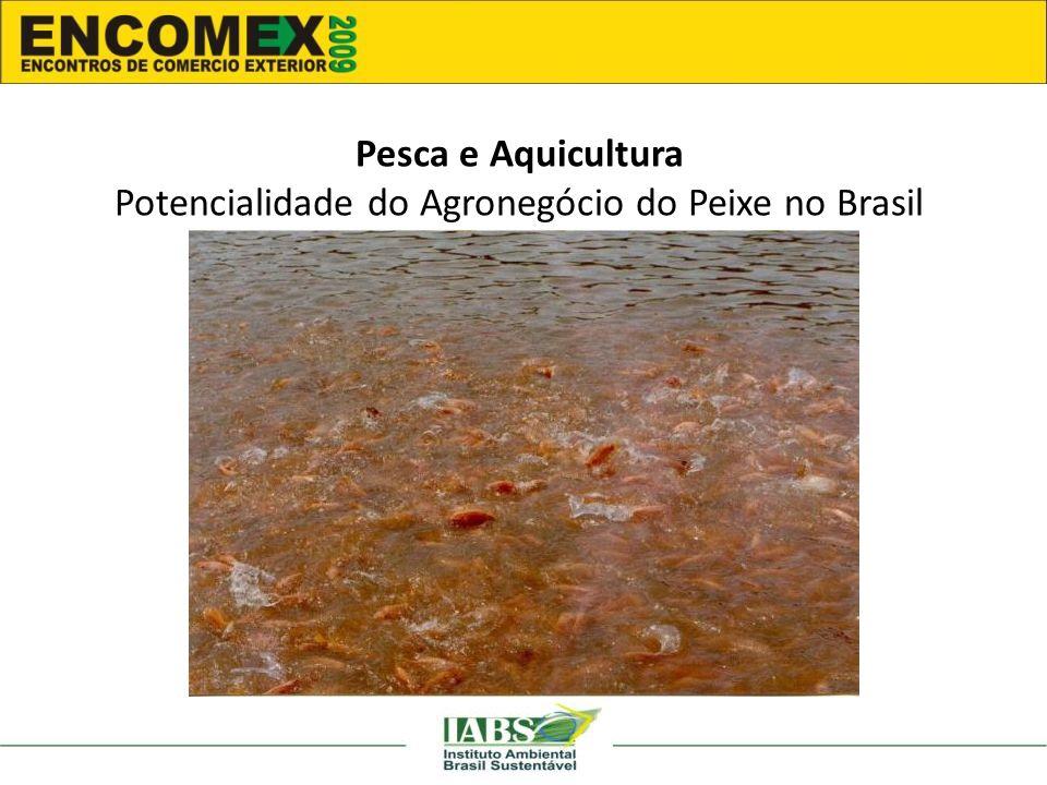 Potencialidade do Agronegócio do Peixe no Brasil
