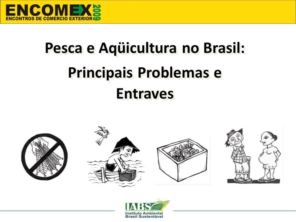 Pesca e Aqüicultura no Brasil: Principais Problemas e Entraves