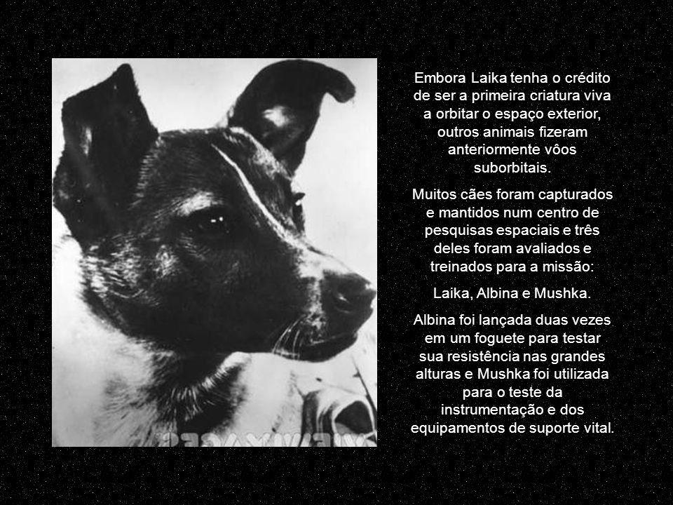 Embora Laika tenha o crédito de ser a primeira criatura viva a orbitar o espaço exterior, outros animais fizeram anteriormente vôos suborbitais.