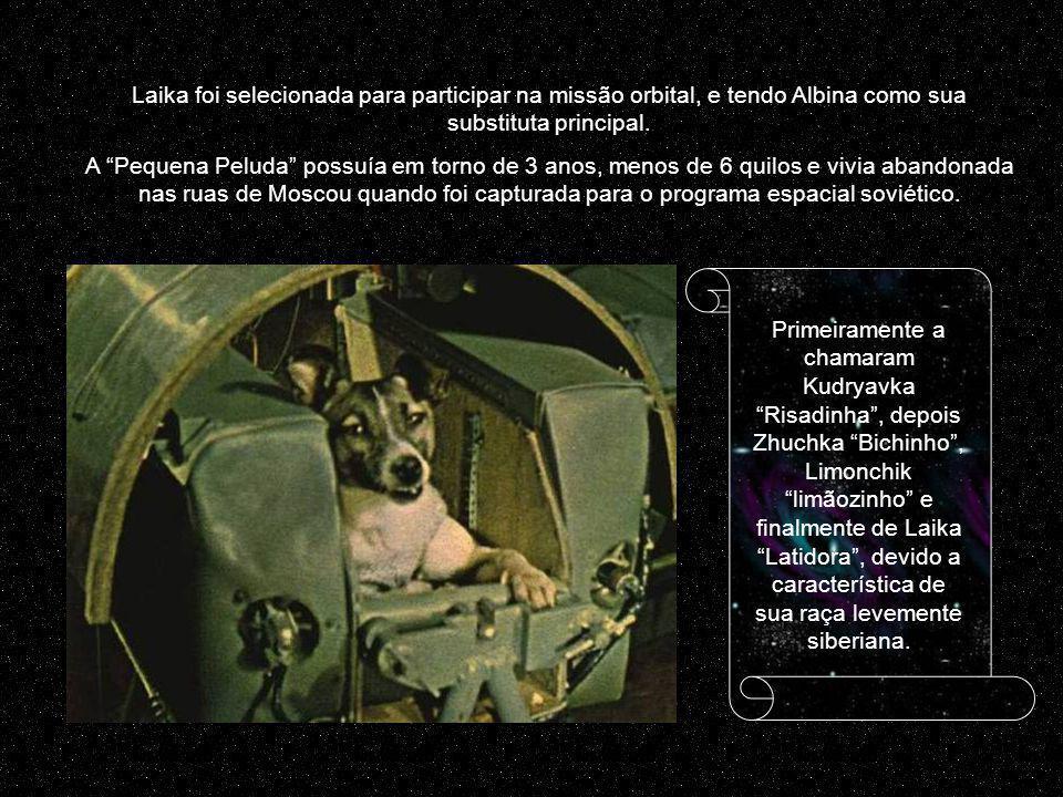 Laika foi selecionada para participar na missão orbital, e tendo Albina como sua substituta principal.