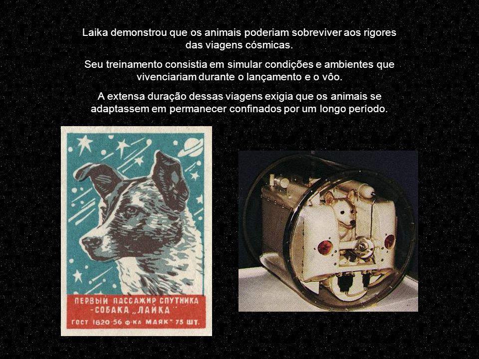 Laika demonstrou que os animais poderiam sobreviver aos rigores das viagens cósmicas.