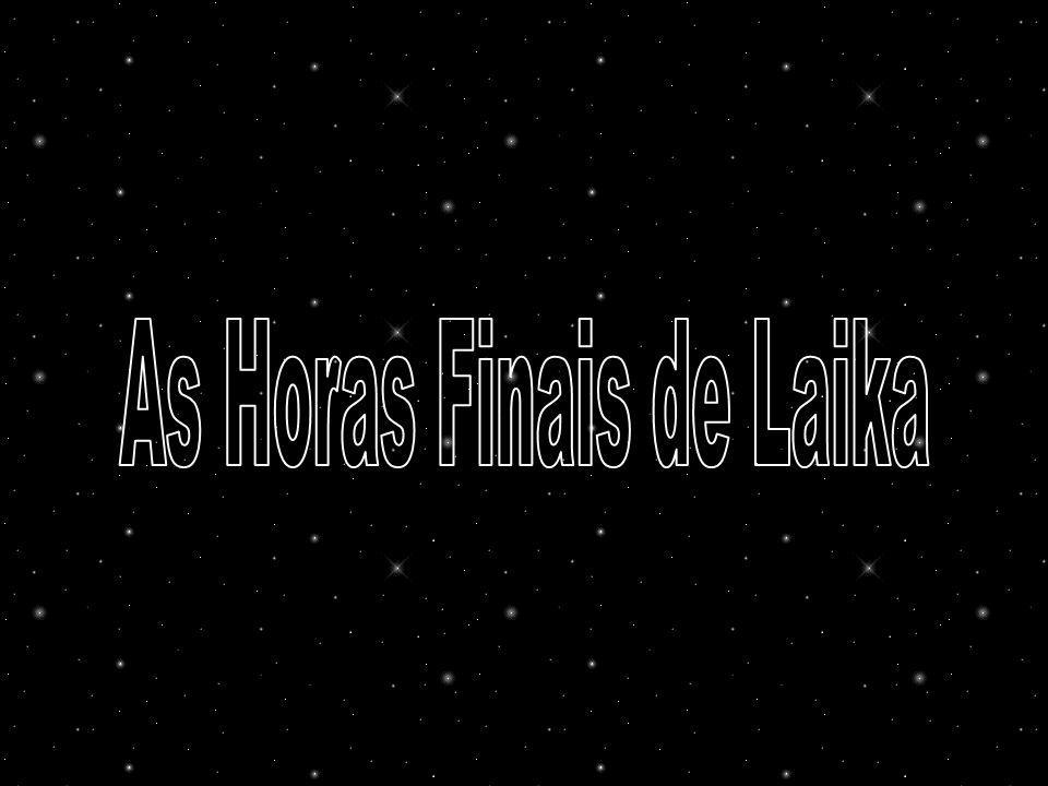 As Horas Finais de Laika