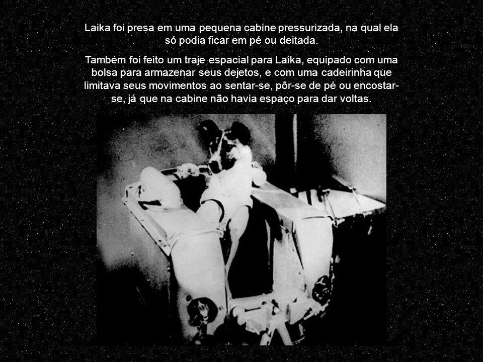 Laika foi presa em uma pequena cabine pressurizada, na qual ela só podia ficar em pé ou deitada.