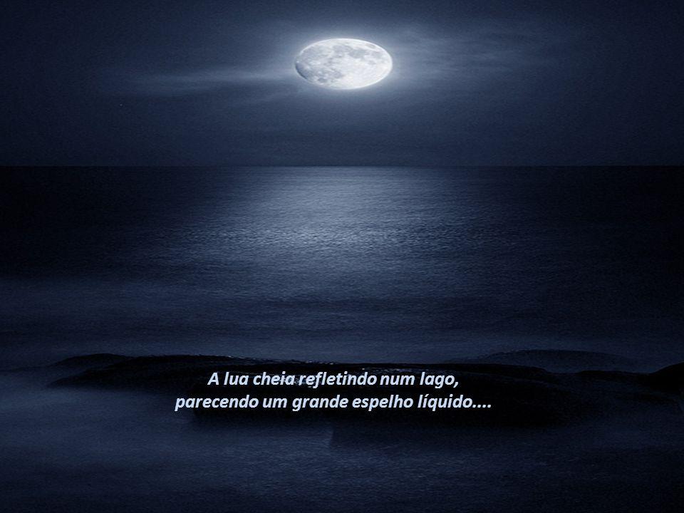 A lua cheia refletindo num lago,