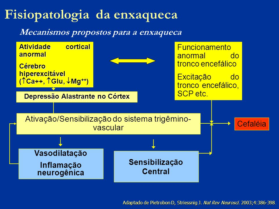 Fisiopatologia da enxaqueca Mecanismos propostos para a enxaqueca
