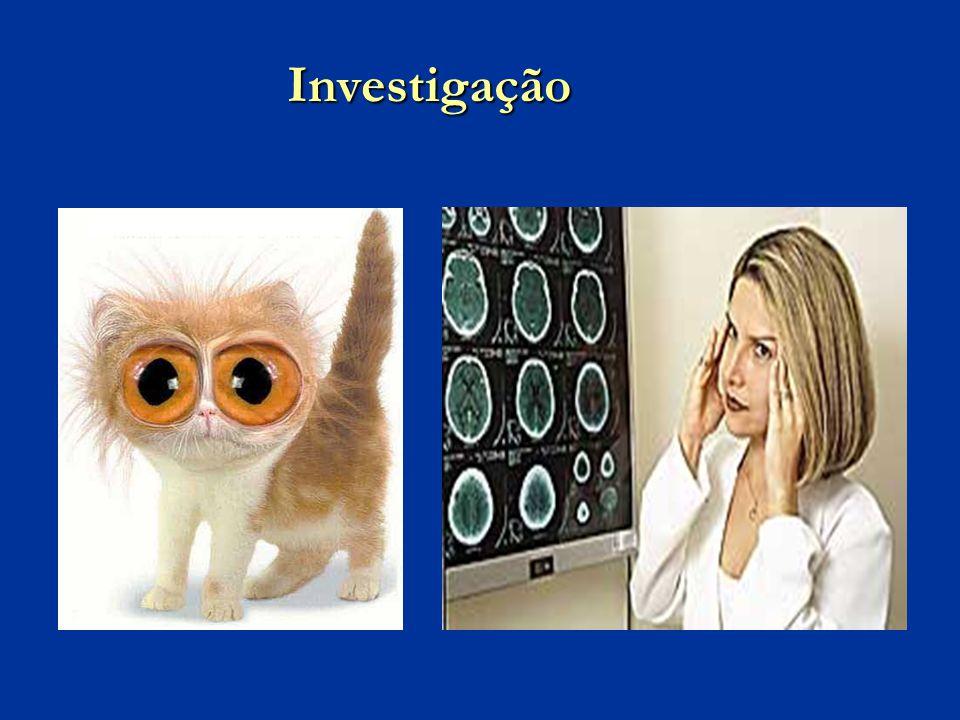 Investigação