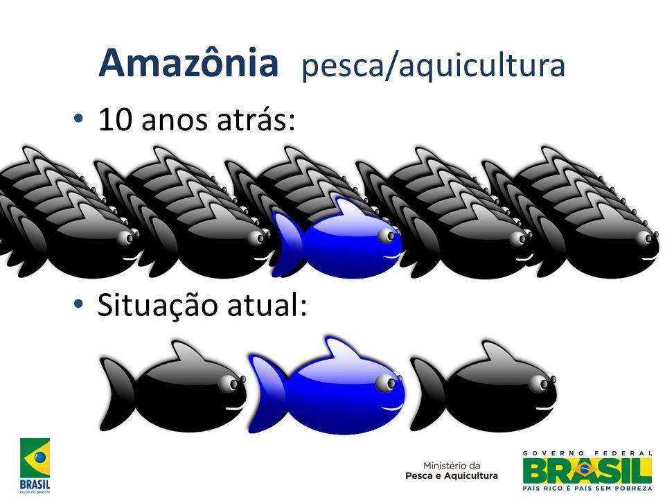 Amazônia pesca/aquicultura