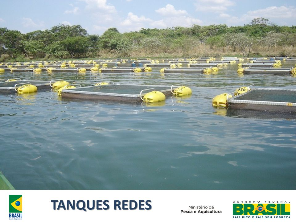 TANQUES REDES