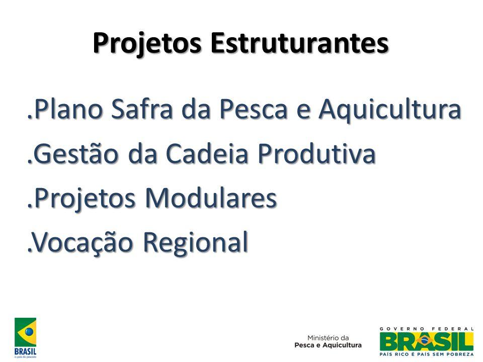 Projetos Estruturantes