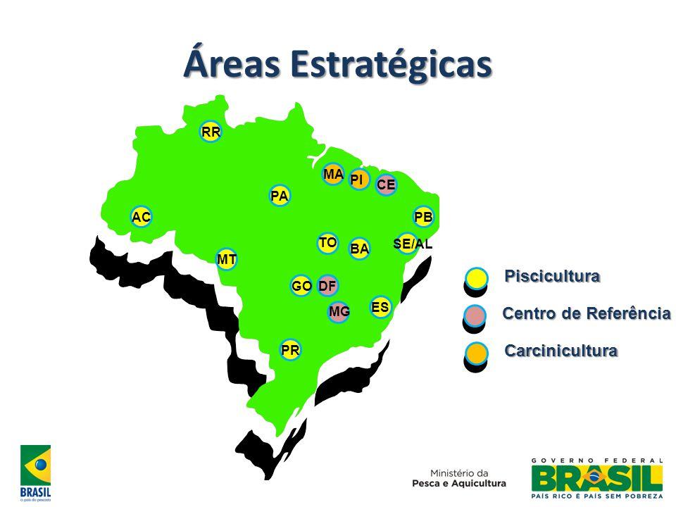 Áreas Estratégicas Piscicultura Centro de Referência Carcinicultura RR