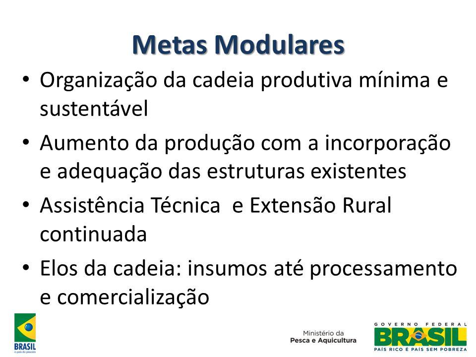 Metas Modulares Organização da cadeia produtiva mínima e sustentável