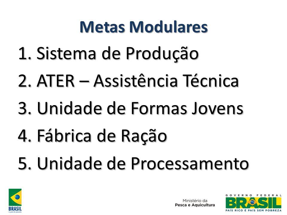Metas Modulares 1. Sistema de Produção 2. ATER – Assistência Técnica 3.