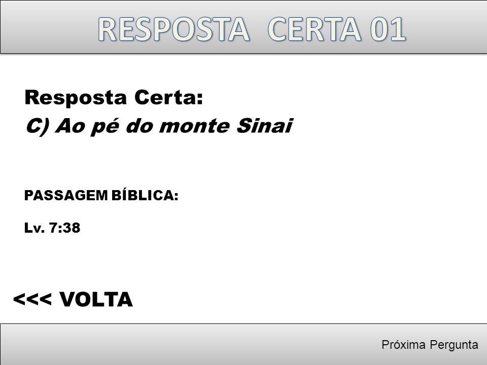 RESPOSTA CERTA 01 Resposta Certa: C) Ao pé do monte Sinai