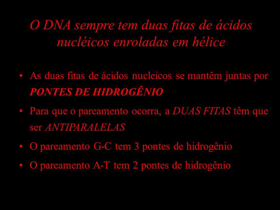 O DNA sempre tem duas fitas de ácidos nucléicos enroladas em hélice