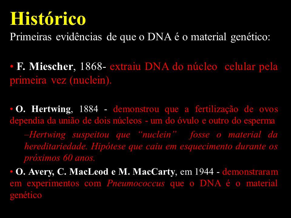 Histórico Primeiras evidências de que o DNA é o material genético: