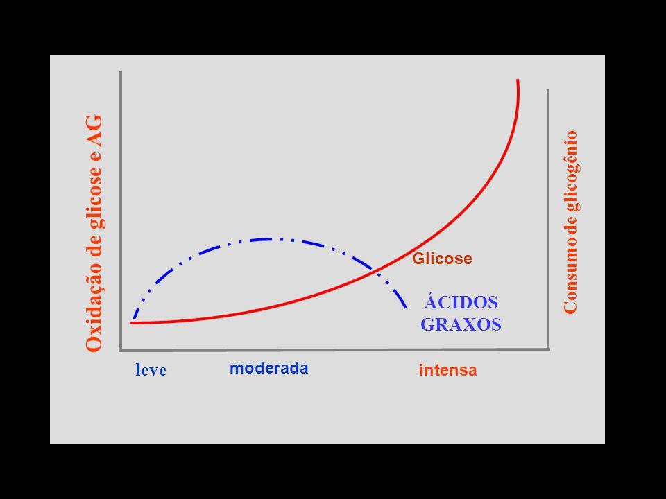 Oxidação de glicose e AG