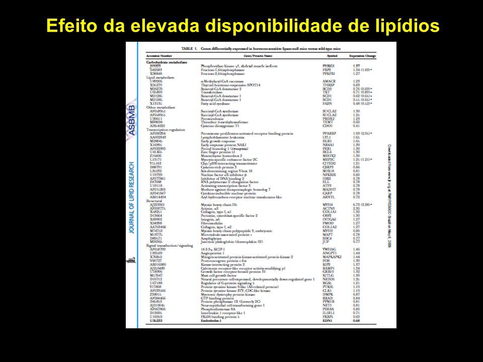 Efeito da elevada disponibilidade de lipídios