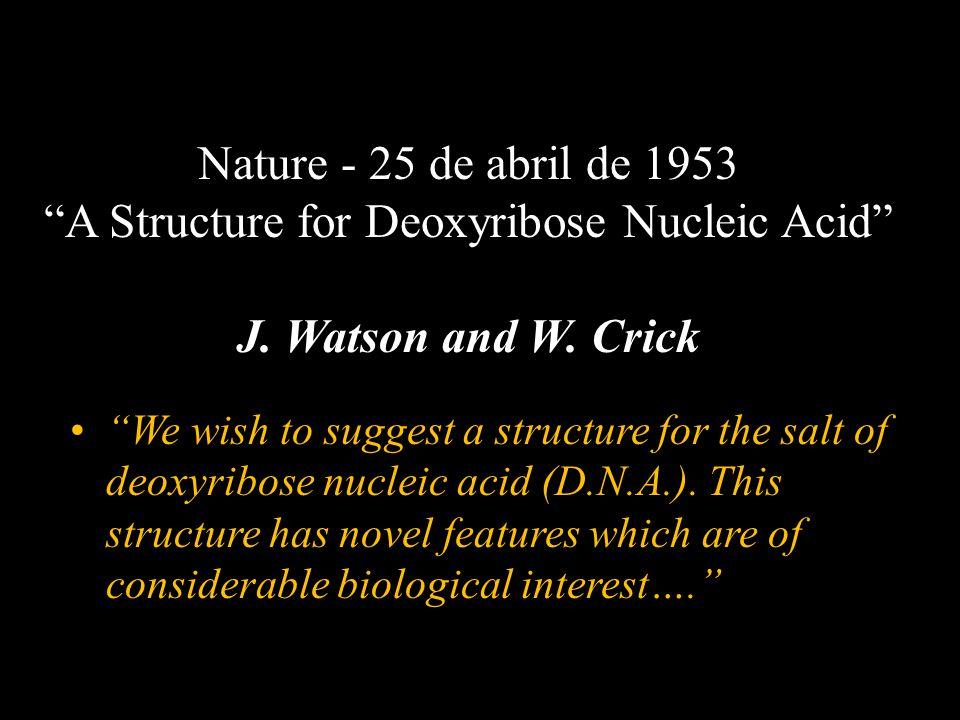 Nature - 25 de abril de 1953 A Structure for Deoxyribose Nucleic Acid J. Watson and W. Crick